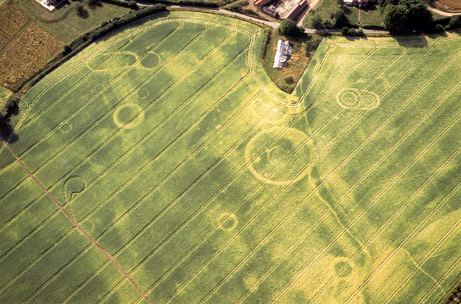 Aerial photograph of Damerham crop marks